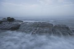 Orden en el caos. (Francisco J. Prez.) Tags: naturaleza nature mar spain cdiz playas algeciras sigma1020mm pentaxart pentaxk5 franciscojprez