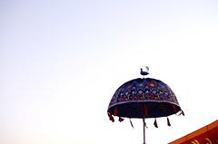 Tarnetar Fair-2013-4 (anandjpurohit777) Tags: morning travel blue light sky india tourism beautiful festival rural umbrella giant walking temple colours famous wheels fair tourist peoples celebrations colourful tradition hinduism enjoying gujarat tarnetar mahadev sceanic crowde 2013 trinetreshwar