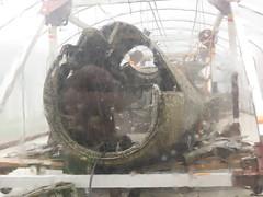 DORNIER Do17 AT RAF COSFORD MUSEUM (RON1EEY) Tags: ww2 raf luftwaffe battleofbritain dornier17 rafcosfordmuseum2013
