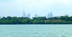 Panama City Skyline Jul 6, 2013 1-037