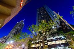 _DSC8699 (Abiola_Lapite) Tags: travel night spring sydney australia australien nikkor d800 シドニー オーストラリア 1424mmf28g