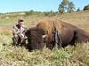 New Mexico Elk Hunt 75