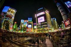 Shibuya Crossing (/\ltus) Tags: japan tokyo shibuya 2008 hdr shibuyacrossing 5xp