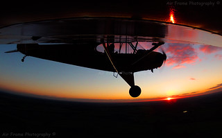 Cub flying as the sunsets...