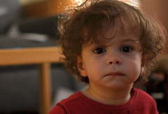 Trust (MPnormaleye) Tags: baby boys face closeup kids portraits 35mm children babies child candid families utata unposed candids