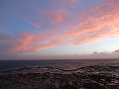 (Moppii) Tags: ocean pink sunset sea sky orange color beach lines clouds composition golden perfect wind horizon calm shore serene shape streaks reef