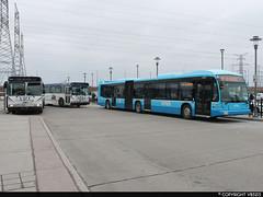TTSYRT001Charter-044 (vb5215's Transportation Gallery) Tags: york toronto v transportation transit orion tts society region 001 charter yrt exgo