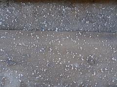 Eiskristalle 2 (Thorte Berlin) Tags: frost kälte eis eiskristalle berlinzehlendorf zehlendorf steglitzzehlendorf deutschland germany chill freezing nip freeze diamonddust frostintheair frostmist iceneedles icecrystal