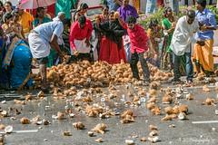The Coconut Smash (Fermat48) Tags: georgetown penang malaysia jalanmagazine coconut taipusam godmurugan silverchariot lordmurugan eos 7dmarkii breakingcoconuts coconutmilk hindufestival festival canon