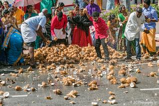 The Coconut Smash