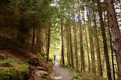 Jungfernsprung: Nature Wanderer (JOANLIII) Tags: nature austria woods d5100 jungfernsprung heiligenblut