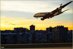 Before landing (Damaz Real Fantasy) Tags: sunset fly flying aerial view
