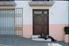 The Homeless (AndreiSaade) Tags: minolta himatic7s minoltahimatic7s himatic kodak proimage 100 streetphotography rangefinder 35mm 35mmfilm keepfilmalive istillshootfilm méxico xalapa film