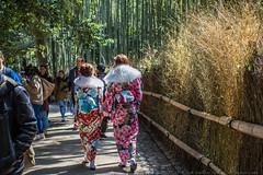 The Bamboo Forest of Arashiyama (julesnene) Tags: arashiyama canon7dmark2 canon7dmarkii japan juliasumangil kyoto thebambooforestofarashiyama bamboo culture forest julesnene landscape nature travel saganobambooforest sagano bamboogrove kyōtoshi kyōtofu jp