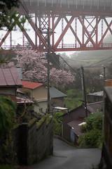 Nebukawa (ubic from tokyo) Tags: 85mm cosina ilce7 japan planar planart1485 planart1485zf2 sony sonya7 zf2 carlzeiss