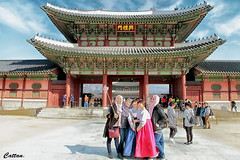 Selfie - South Korea (cattan2011) Tags: travelbloggers traveltuesday travel travelphotography gyeongbokgungpalace national cultural streetart streetpicture streetphoto streetphotography selfie korea southkorea landscape landscapeportrait