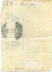 Esboço do Brasão do Concelho (Arquivo da Memória - Vendas Novas) Tags: documento déc1960 heráldica