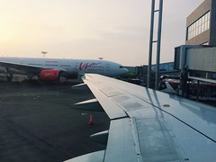 dme->vog (Alexey Tyudelekov) Tags: dme domodedovo wing airport moscow