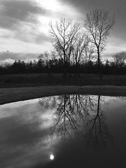 It always rains on Good Friday (Bo Dudas) Tags: nature water pool trees clouds sunset treeline bw blackwhite sky goodfriday