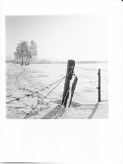 Anthering im Winter (cardijo) Tags: landscape landschaft austria winter blackandwhite bw schwarzweis sw analog print darkroom ilford multigrade rolleiflex fp4 rodinal film