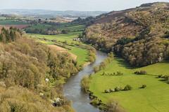 Symonds Yat (Steve Vallis) Tags: england wales symonds yat border river valley grass trees landscape