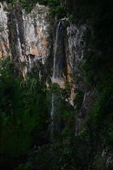 Springbrook, QLD, Australia (phudd23) Tags: queensland qld australia springbrook national park springbrooknationalpark waterfall falls