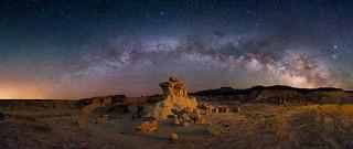 Desert Dreams