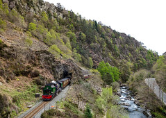 Spring in Snowdonia (chrisjc90) Tags: steam snowdonia aberglaslyn beddgelert ffestiniog ffwhr train gorge river rail