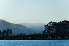 20170302-02-Morning mist at Lake Fanny (Roger T Wong) Tags: australia greatpinetier lakefanny np nationalpark sel70300g sony70300 sonya7ii sonyalpha7ii sonyfe70300mmf2556goss sonyilce7m2 tasmania wha wallsofjerusalem worldheritagearea bushwalk camp hike mist morning trektramp walk