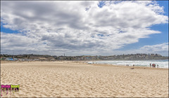 DSC_2341_X (Design Board Photography) Tags: landscapes sea bondibeach beaches designboardphotography
