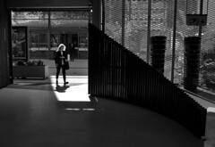In the light (Alain Rempfer) Tags: streetphotography candidphotography candidportrait candidsnapshot emotion face visage peopleinthestreet photoderue publicspace espacepublic scenederue scenedevie scenefromthestreet urban portraiture viequotidienne dailylife photographienonposée unposedphotography nikon nikond7000 femme woman noiretblanc bw blackandwhite lumiere light ombre shadow
