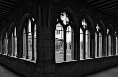 Kreuzgang - Cloister (cammino5) Tags: gotik gothic cloister franziskanerkirche würzburg franken deutschland kreuzgang märz 2017