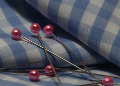 Check Mate - March 27 - 8555 (DASA Images) Tags: macromondays fabric cloth pins gingham macro macromonday clothtextile textile check blue