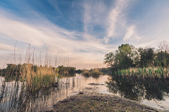Pelagicevo lake (Cocodix) Tags: spring bosniaandherzegovina landscape carp outdoor canon geotaged wildlife travel flowersplants lake fishing swamp cocodix cocolino wide bosnia pelagićevo republikasrpska ba