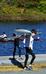 2016 Head of the Charles Regatta 2016-10-23 - DSC_4663 (bix02138) Tags: headofthecharlesregatta headofthecharlesregatta2016 october23 2016 rowing rowers athletes sports charlesriver allstonma cambridgema