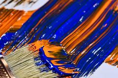 Something Orange, Something Blue (WilliamND4) Tags: orangeandblue macromonday hmm paint brush macro tokina100mmf28atxprod nikond810