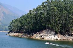 The Lake (Sam_sush) Tags: kerala munnar boats lake mountains trees landscape nature spring beautiful nikon d3300 70300mm f4563 afp nikkor