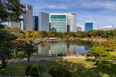 IMG_2496 (Evgeny Gorodetskiy) Tags: sunshine autumn garden landscape building travel cityscape outdoor weekend city park skyscrapper himarikiyu japan tokyo minatoku tōkyōto япония jp