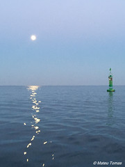 boia (Mateu Tomas) Tags: fortelasadeisabelii illesbalears menorca mao boya boia sea mar buoy