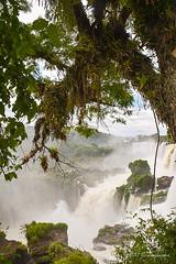 entre árboles (Angela MGM) Tags: parquenacionaliguazú brasil argentina iguazú naturaleza landscape paisaje agua cascada viaje lugares travel natural