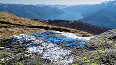 La vista dalla Cima della Trosa (1869m) - Ticino - Svizzera (Felina Photography - in Ticino:-)) Tags: cimadellatrosa locarno lagomaggiore ticino tessin lac lago see meer lake water spring cardada cimetta