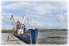 Arctic Swan (Eileen (EMC)) Tags: arcticswan boat fishingboat killala mayo ireland irlande irlandi harbour port nikon d3100 shoreline coastalireland coastalview bythesea sky clouds outdoor oldtrawler
