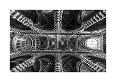 Il Duomo Di Siena (W.Utsch) Tags: siena voigtländer hyperwide heliar duomo schwarz weiss tuscany toskana toscana wideangle superwide back white italia