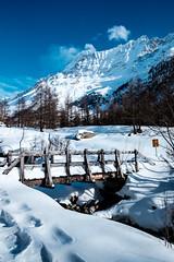 Lötschental 47 (jfobranco) Tags: switzerland suisse valais wallis lotschental winter alps snow