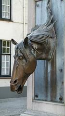 L1030908 (SeppoU) Tags: belgia belgium brugge turisti tourist näpsy snapshot huhtikuu april 2017 patsas statue hevonen horse leica vlux2