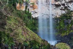 purling brook falls (nzfisher) Tags: waterfall springbrooknationalpark springbrook falls goldcoast queensland australia hinterland rainforest longexposure canon 50mm lee bigstopper