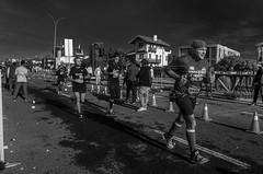 Maratón 42K Montevideo   170423-0000240-jikatu (jikatu) Tags: 162 42km carrasco gr jikatu marathon montevideo ricoh uruguay bw black white blackwhite monocrohme monocromo