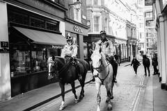 Police horses on Bow Lane (wintoid) Tags: leicasummicron35mmf20asph leicamp240