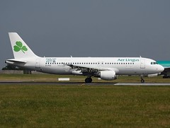 Aer Lingus                                        Airbus A320                                         EI-FCC (Flame1958) Tags: aerlingus aerlingusa320 airbusa320 a320 320 airbus socialjet facebook eifcc dub eidw dublinairport socialmedia aviationsocialmedia 220713 0713 2013 8419