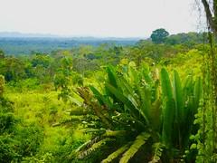 Version 2 Belize April 2017 (bermudafan8) Tags: 2017 spring break bermudafan8 belize